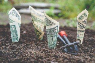 Отсутствие финансовой грамотности