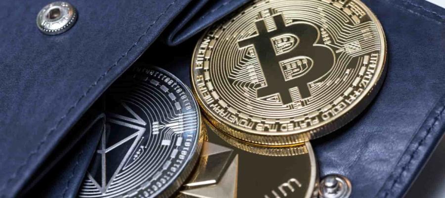 Виды криптовалютных кошельков